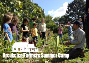 Promotional postcard for Breukelen Farmers Summer Camp, 2013