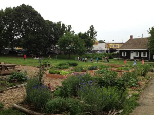 View of the museum grounds and farm beds near the entrance to the park