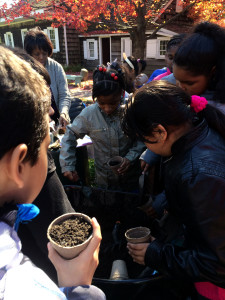 Fourth graders from a local elementary school dig in and prepare soil for planting seeds