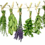 Farmhouse Herbs